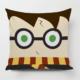 Taie d'oreiller avec une image de Harry Potter et son éclair sur un coussin
